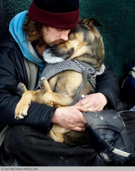 Le chien est le meilleur ami de l homme