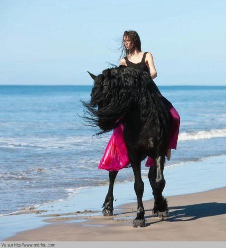 Les filles vous réver de faire du cheval au bord de la mer