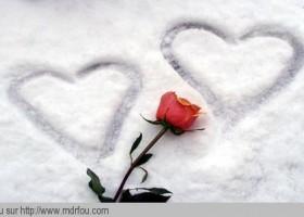 Pour tous ceux qui ont un amour vrai