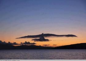 Sympa ce nuage en forme d aigle
