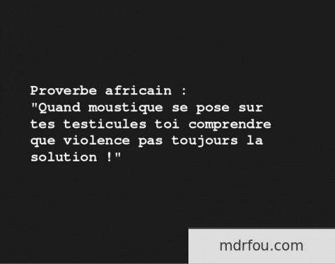 Proverbe africain quand un moustique se pose