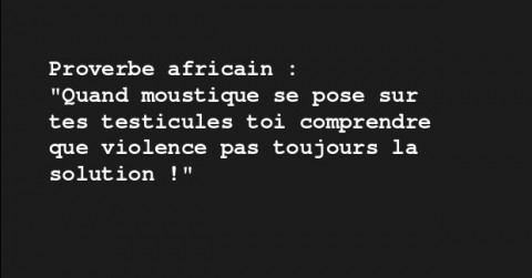 Proverbe africain quand un moustique se pose (featured)